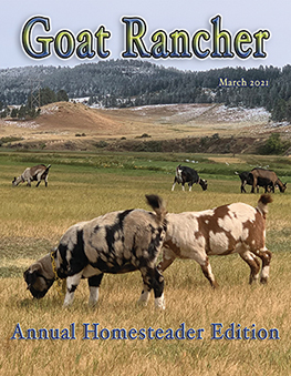 Featured in the March issue of Goat Rancher (page 22-23).