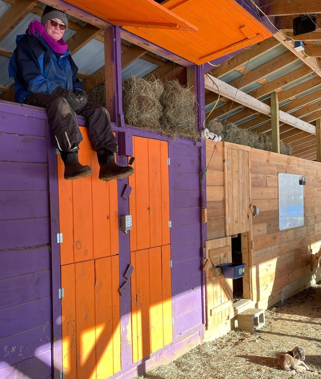 Kathy hanging out in the loft with the square bales