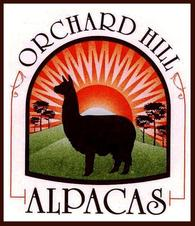 Orchard Hill Alpacas - Logo