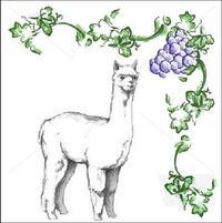 Wooden Valley Alpacas - Logo