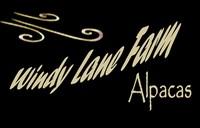 Windy Lane Farm Alpacas - Logo