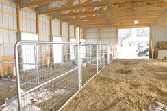 Pen Areas in Breeding Barn