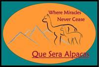 Que Sera Alpacas - Logo