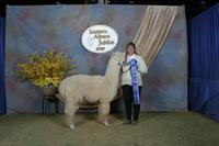 hilldale farm alpacas - Logo