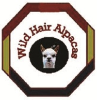 Wild Hair Alpacas LLC - Logo