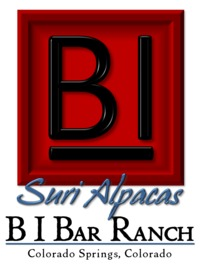 B I Bar Ranch - Logo