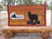Alpacas at Lone Ranch - Logo