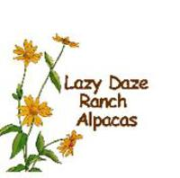 Lazy Daze Ranch - Logo