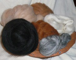 Photo of Alpaca Roving-Natural Colors