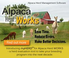 Photo of Alpaca Herd WORKS