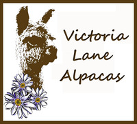 Victoria Lane Alpacas LLC - Logo