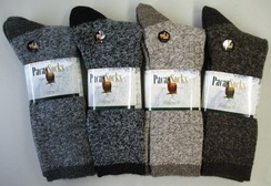 Photo of PACA Socks