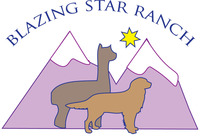 BLAZING STAR RANCH - Logo