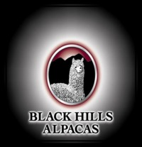 BLACK HILL'S ALPACAS - Logo