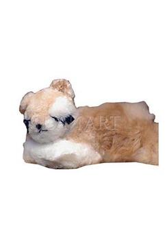Photo of Sleeping Bear Doll