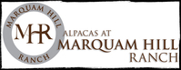 Alpacas at Marquam HIll Ranch - Logo