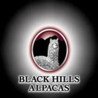 Black Hills Alpacas - Logo