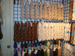 Yarns from Sandollar Alpacas Herd Available in the Leather Sandollar!