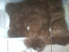 Alpaca Fiber Processing