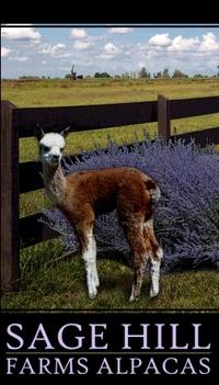 Sage Hill Farms Alpacas - Logo