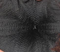 Mr. Cash - 2010 fleece