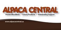 Alpaca Central - Logo