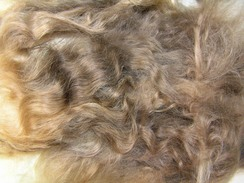 washed and combed suri fleece