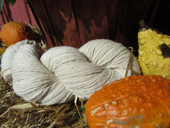 Photo of Natural Winter White Pure Alpaca Yarn