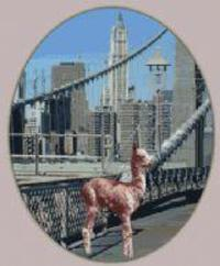 Brooklyn Alpacas - Logo