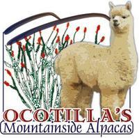 Ocotilla's Mountainside Alpacas, LLC - Logo