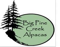 Big Pine Creek Alpacas - Logo