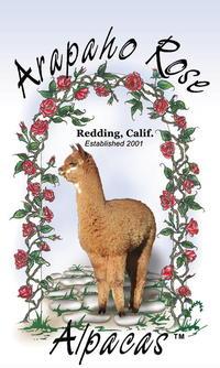Arapaho Rose Alpacas - Logo