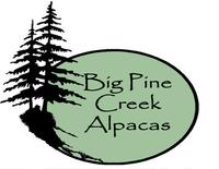 Big Pine Creek Alpacas - Logo