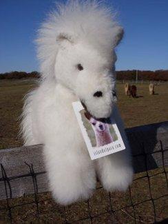 Baby Alpaca Fur Horse/Pony
