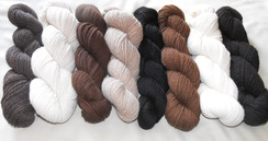 Photo of YARN (3 ply sport weight)