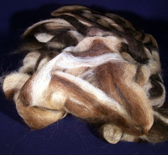 Mixed Suri Roving