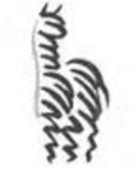 Wildlife Ranch Suri Alpacas - Logo