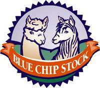 Blue Chip Stock Alpacas - Logo
