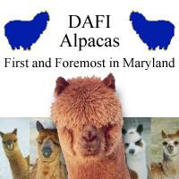DAFI Alpacas - Logo