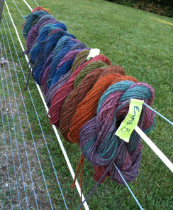 yarn dying project
