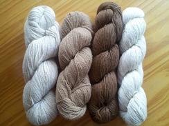 suri and haucaya yarn