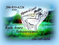 Alpacas el Cantar - Logo
