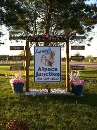Loney's Alpaca Junction - Logo