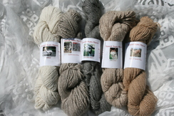 100% Suri Alpaca Yarn light shades