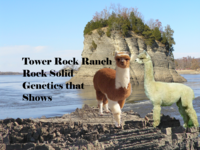 Tower Rock Ranch,LLC - Logo