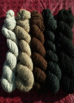 Photo of Worsted Weight Yarn