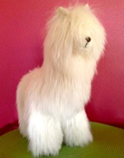 Photo of Suri Sculptured Soft Alpaca