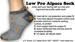 Low Pro Ankle Sock