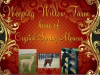 Weeping Willow Farm - Logo
