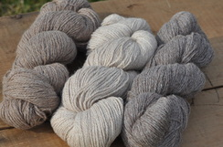 Photo of 300 yrd 3ply skeins Sport Weight